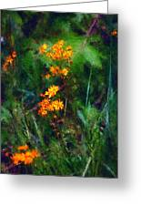 Flowers In The Woods At The Haciendia Greeting Card by David Lane