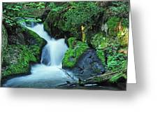 Flowing Softly Greeting Card by Bill Morgenstern