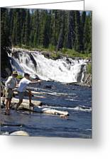 Fly Fishing The Lewis River Greeting Card by Marty Koch