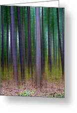 Forest Abstract02 Greeting Card by Svetlana Sewell