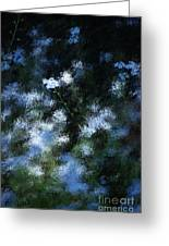 Forget Me Not Greeting Card by David Lane