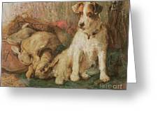 Fox Terrier With The Day's Bag Greeting Card by English School