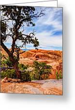 Framed Arch Greeting Card by Chad Dutson