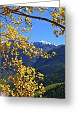 Framed By Fall Greeting Card by Scott Mahon
