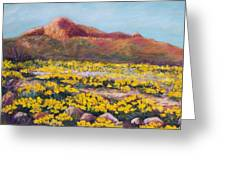 Franklin Poppies Greeting Card by Candy Mayer