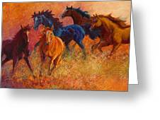 Free Range - Wild Horses Greeting Card by Marion Rose