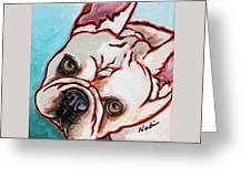 French Bulldog Greeting Card by Nadi Spencer