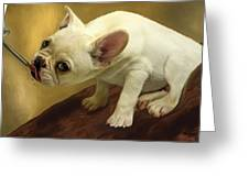 French Bulldog Greeting Card by Thanh Thuy Nguyen