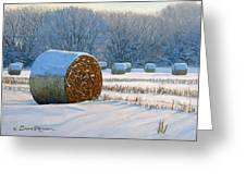 Frigid Morning Bales Greeting Card by Bruce Morrison