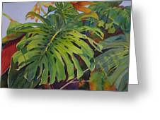 Fronds And Foliage Greeting Card by Judy Mercer