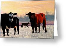 Frosty Reception Greeting Card by Doug Strickland