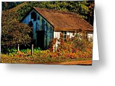 Garden Shed Greeting Card by Helen Carson