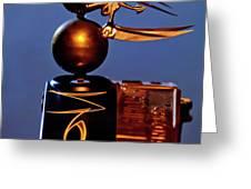 Gargoyle Hood Ornament 3 Greeting Card by Jill Reger