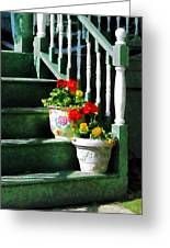 Geraniums And Pansies On Steps Greeting Card by Susan Savad