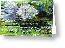Germany Baden-baden Spring 2 Greeting Card by Yuriy  Shevchuk