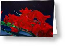Gladiolas Greeting Card by Gregory Van Raalte