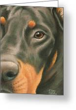 Goggie Doberman Greeting Card by Karen Coombes