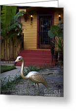 Gold Flamingo Greeting Card by Jeanne  Woods