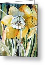 Golden Daffodil Greeting Card by Mindy Newman