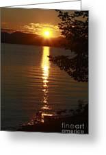 Golden Evening Sun Rays Greeting Card by Deborah Benoit