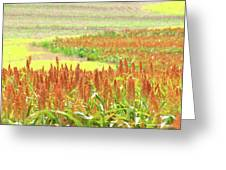 Golden Field In Dry Brush Greeting Card by James Granberry