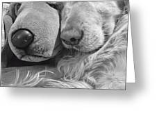 Golden Retriever Dog and Friend Greeting Card by Jennie Marie Schell
