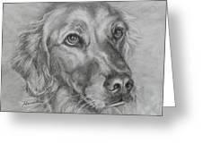 Golden Retriever Drawing Greeting Card by Susan A Becker
