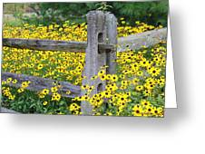 Golden-Rod  Crowd Out Greeting Card by Deborah  Crew-Johnson
