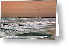 Golden Shore Greeting Card by Steve Karol