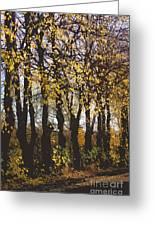 Golden Trees 1 Greeting Card by Carol Lynch