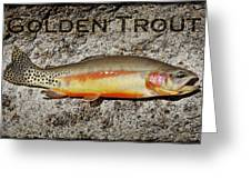 Golden Trout Greeting Card by Kelley King