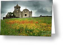 Goliad In Spring Greeting Card by Jon Holiday