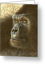 Gorilla Greeting Card by Marlene Piccolin