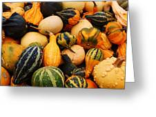 Gourds Greeting Card by Jame Hayes