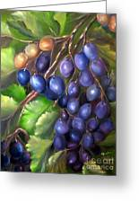 Grapevine Greeting Card by Carol Sweetwood