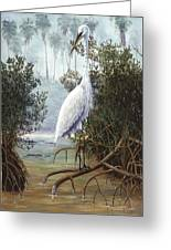 Great White Heron Greeting Card by Kevin Brant