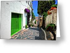 Green Door Passage  Greeting Card by Harry Spitz