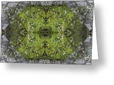 Green Mandala Greeting Card by Viktor Savchenko