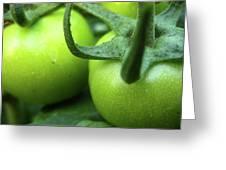 Green Tomatoes No.3 Greeting Card by Kamil Swiatek