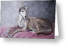 Greyhound At Rest Greeting Card by George Pedro