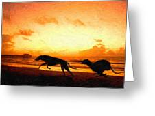 Greyhounds On Beach Greeting Card by Michael Tompsett