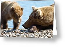 Grizzly And Cub Greeting Card by Brandon Broderick