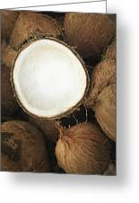 Half Coconut Greeting Card by Brandon Tabiolo - Printscapes