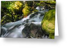 Hanson Falls Greeting Card by Larry Ricker