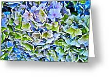Hanson Hydrangea Greeting Card by Gwyn Newcombe