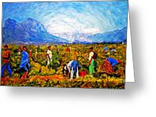 Harvest Time Greeting Card by Michael Durst