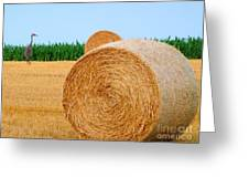 Hay Bale With Crane Greeting Card by Michael Garyet