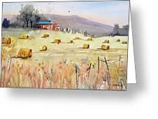 Hay Bales Greeting Card by Ryan Radke
