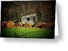 Hayroll Shed Greeting Card by Michael L Kimble