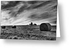 Hayrolls And Field Greeting Card by Steven Ainsworth